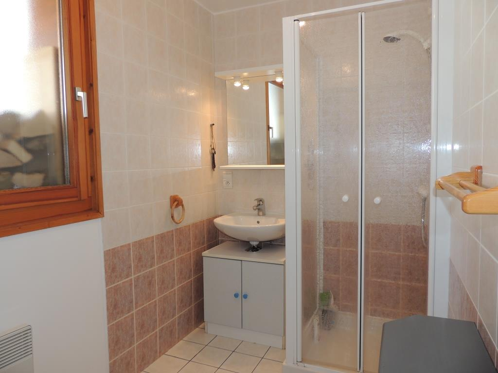 Turche Chalet Shower Room