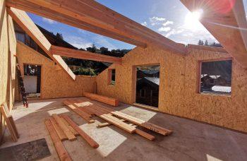 Ambrocela Build progress Roof
