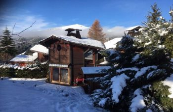 Chalet Panda 1394 in snow