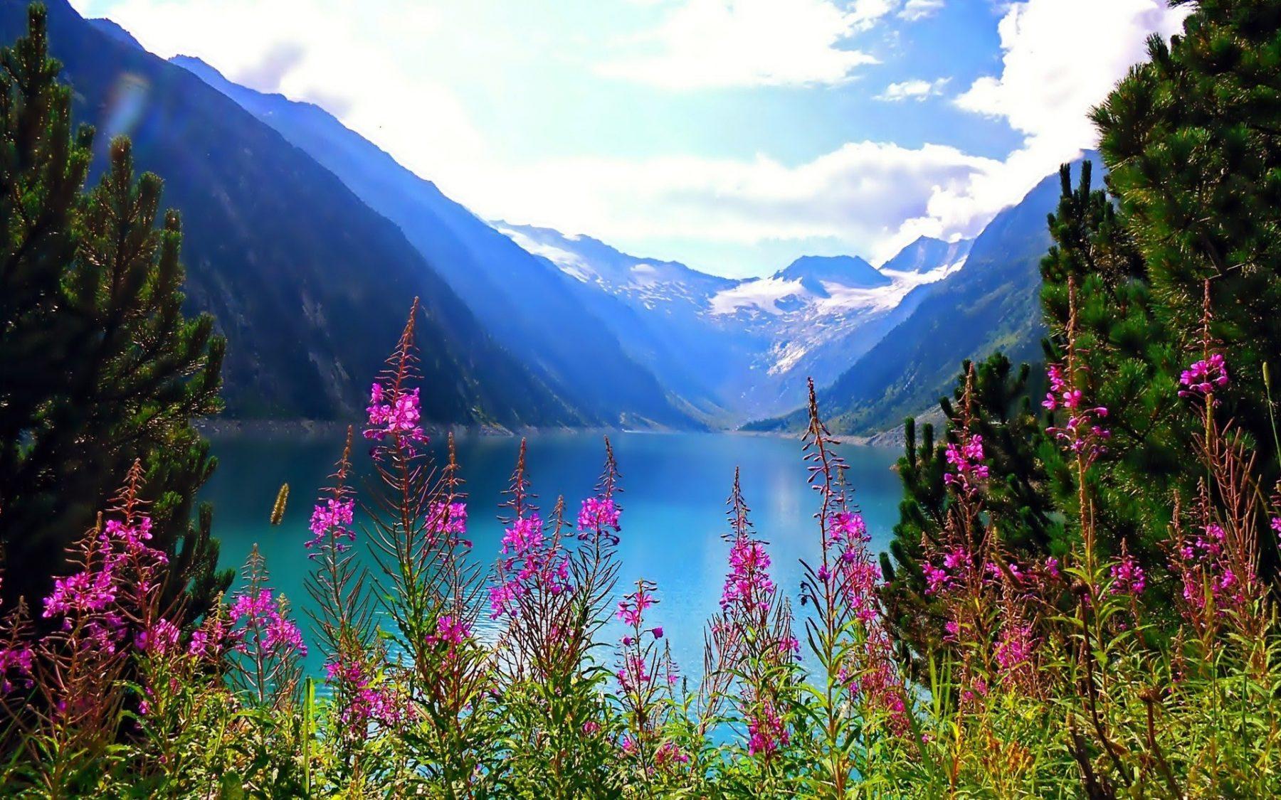 Alpine Lake with mountain view