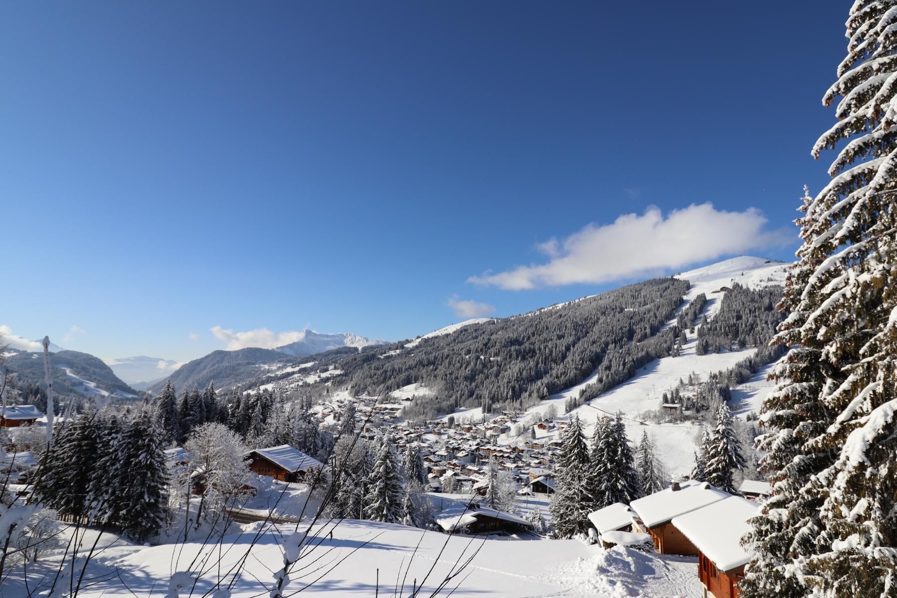 Chavannes new build 796 Winter View