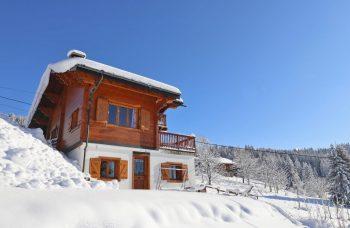 Chavannes ski in Chalet 797 Chalet & garden