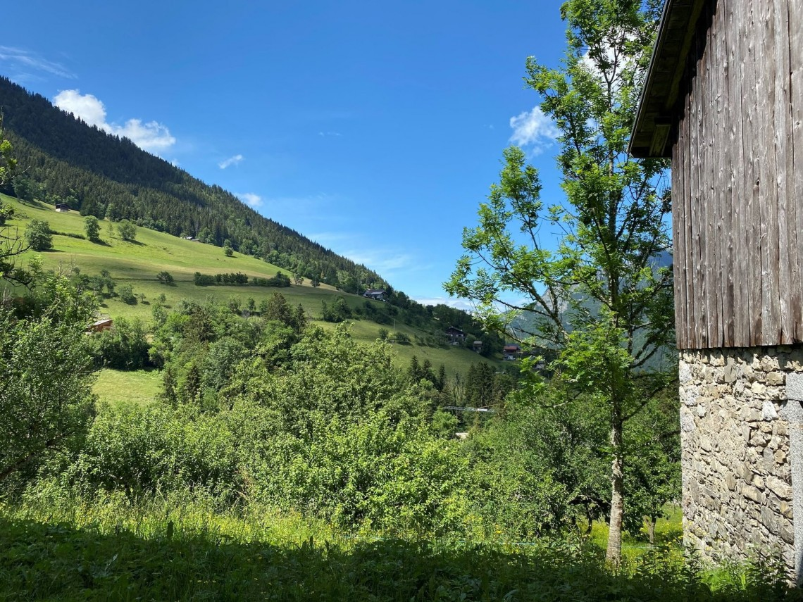 Seytroux House 958 Summer View