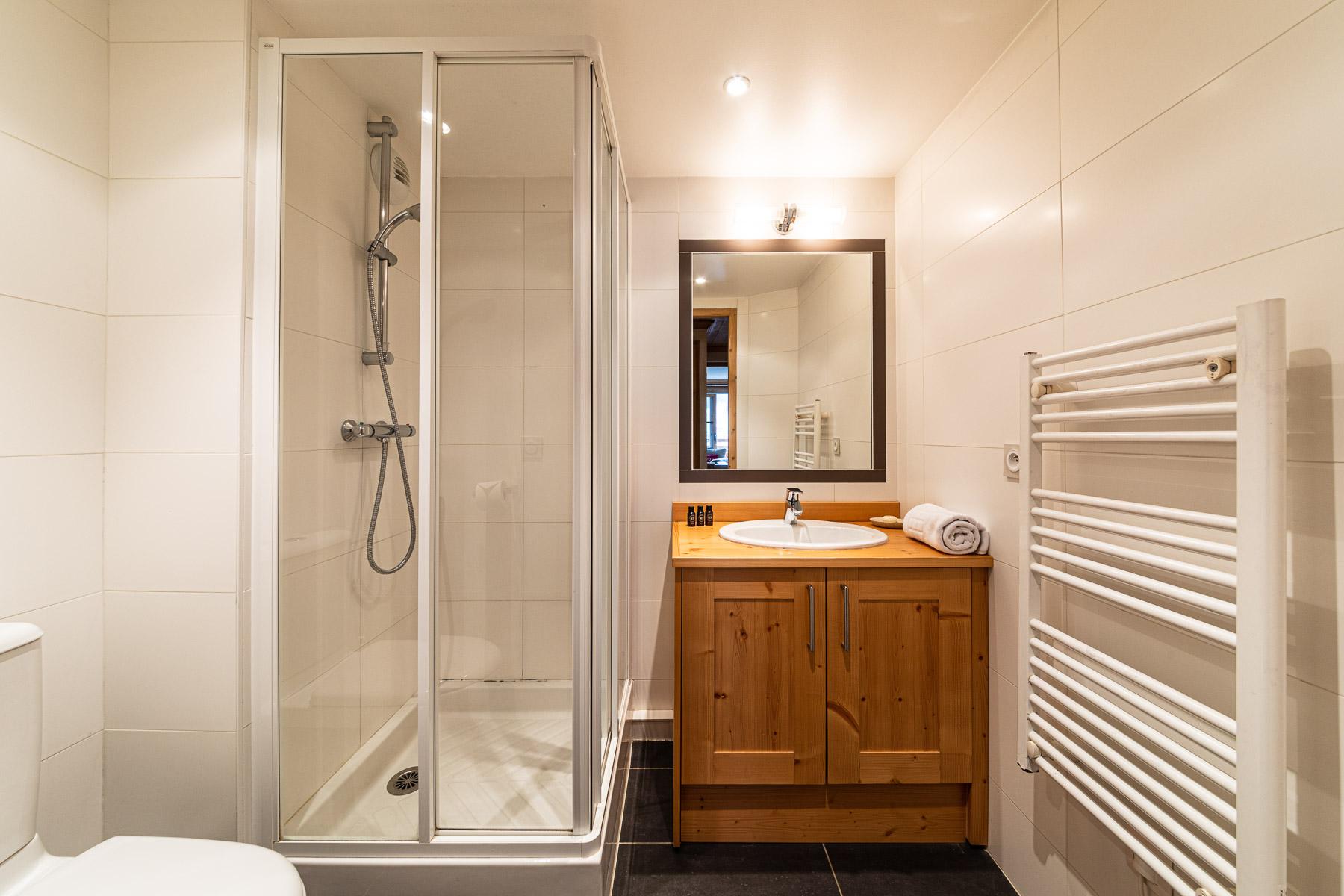 Bois Venants Appt 295 Shower Room